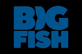 Vai al sito di Big Fish Games