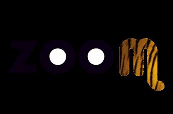 Zoom Torino coupon