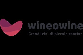 Vai al sito di Wineowine