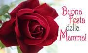 festa della mamma rosa grande rossa
